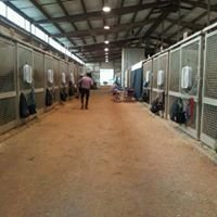 The Virginia Horse Center- ASHAV