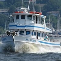 The Sea Horse Party Boat and Fishing Charters