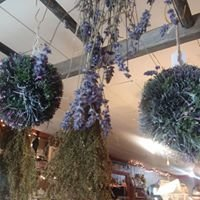 Gibsons Herbal Gatherings- Primitive Candles, Gifts & More