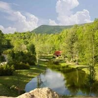 Wildflower Creek