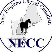 New England Cheval Canadien