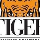 Tiger Payment Solutions
