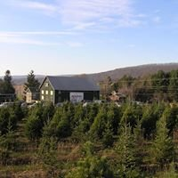 TLC Tree Farm