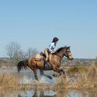 Horizon Horseback South Africa & Botswana