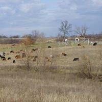 Tannachton Farm