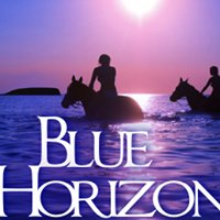 Blue Horizon Boutique Resort