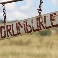 Drumburle - Sustainable Beef Production