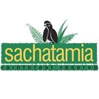 Sachatamia Lodge
