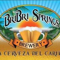 Bri Bri Springs Brewery