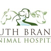 South Branch Animal Hospital