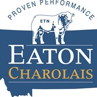 Eaton Charolais Ranch