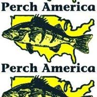 Perch America