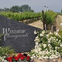 Windrow Vineyard - Tero Estates & Flying Trout Wines