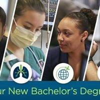 Applied Bachelor Degrees at Highline