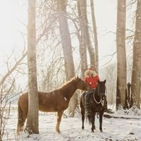 Heart & Spirit of horses - Candice Camille Photography