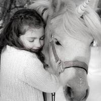 Perfect Ponies LLC
