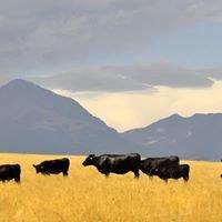 Indreland Ranch