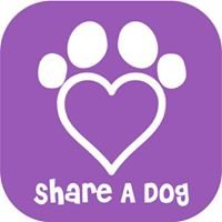 Let's Share A Dog