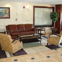 Comfort Inn - Marshall, MI