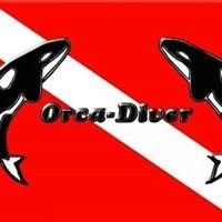Orca-Diver