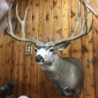 Mullings Taxidermy LLC.