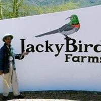 Jackybird Farms