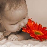 Sweet Beginnings Adoption Services