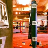 New breed boxing