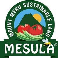 Mesula - Arusha organic farming