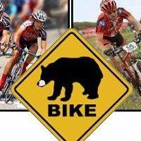 Black Bear Bike