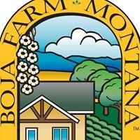 Boja Farm