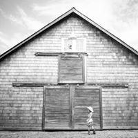 Mandy Sloan Photography