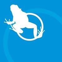Leap Creative Services
