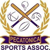 Pecatonica Sports Association