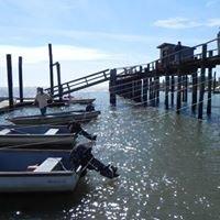 Dad's Place Boat Rentals & Marina