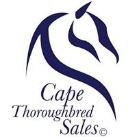 Cape Thoroughbred Sales