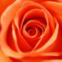 Fiori della Vita - A Fresh Flower Market