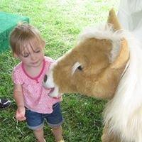 Kids' Corral at the Warren County Farmers' Fair