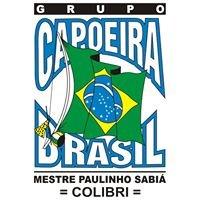 Capoeira Brasil Chicago: Colibri