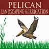 Pelican Landscaping