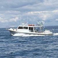 Chesapeake Bay Fishing Charters
