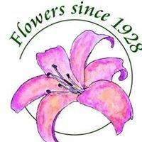 Moehring Woods Flowers