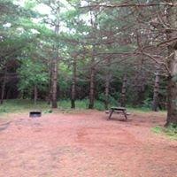 Wildwood Conservation Area