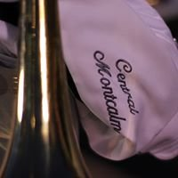 Central Montcalm Band Boosters