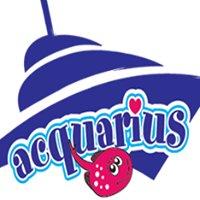Acquarius - Stingray City Tours & Excursions
