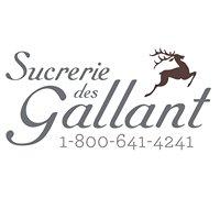 Sucrerie Des Gallant