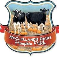 McClelland's Dairy Pumpkin Patch