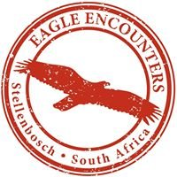 Eagle Encounters