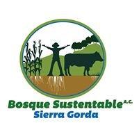 Bosque Sustentable, Sierra Gorda
