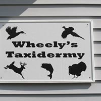 Wheely's Taxidermy